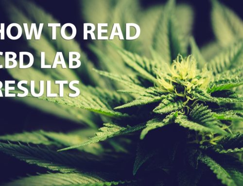 How to read CBD lab tests