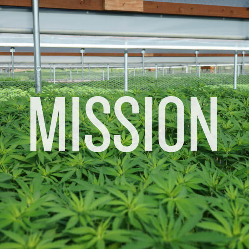 Hemp Daddys Mission
